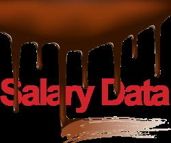 fudged_salary_data